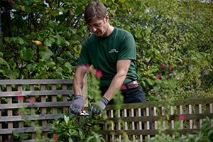 grounds maintenance services